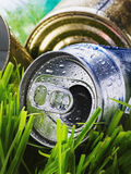 Crumpled aluminum can on a green grass Royalty Free Stock Images
