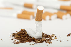 Crumpled cigarette Stock Photography