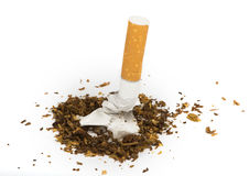Crumpled cigarette Stock Image