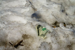 Crumpled dollar in snow on the streen Stock Image