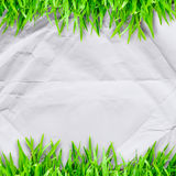 Crumpled paper on  Green grass  and copyspace Royalty Free Stock Photo