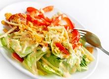 crunchy мексиканская помадка типа салата Стоковое фото RF