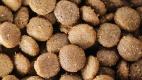 Crunchy biscuits for dogs. Bio stock footage