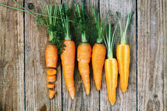 Crunchy carrots, top view Stock Image