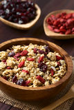 Crunchy Cereal with Dried Berries. Crunchy oatmeal cereal with almond and dried goji berries and cranberries in wooden bowl, photographed with natural light ( royalty free stock photo
