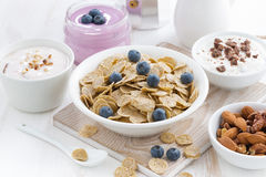 Crunchy flakes with blueberries and various yogurts Stock Image