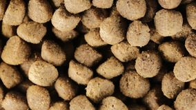 Crunchy biscuits for dogs. Crunchy food biscuits for dogs stock video footage