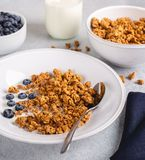 Crunchy Granola Breakfast With Fresh Blueberries. Closeup of a bowl of crunchy granola with fresh blueberries and milk royalty free stock images