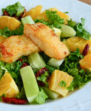 Crunchy green salad with pecans ,sweet lime and fish Royalty Free Stock Images