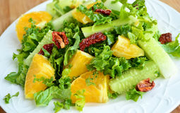 Crunchy green salad with sundried tomatoes. Sweet lime and cucumber Stock Photography
