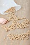Crunchy i kid' ręka Zdjęcia Royalty Free