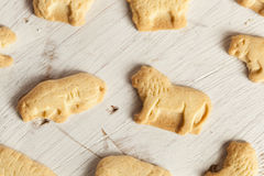 Crunchy Lemon Animal Cracker Cookies Royalty Free Stock Image