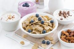 crunchy płatki z czarnymi jagodami i różnorodnymi jogurtami Obraz Stock