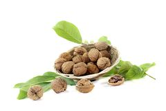 Crunchy walnuts with walnut leaves in a basket Royalty Free Stock Photography