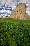 Crusaders castle. In the Yarkon Reserve, Israel Royalty Free Stock Images