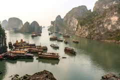 Cruse boats in Halong Bay. Very popular activity for tourists, a cruise inside a wonderful landscape in Halong Bay, Vietnam Stock Photography