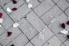 Crush ice  white background. The fragments of the broken glass of the rose petals Stock Images