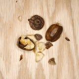 Crushed acorn. Stock Photo