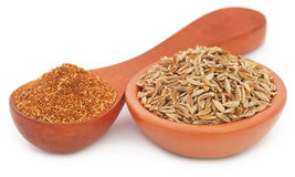 Crushed cumin with whole ones Stock Photography
