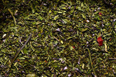 Crushed dried mint. Royalty Free Stock Image