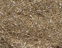 The crushed dried up curative grass. Royalty Free Stock Photo