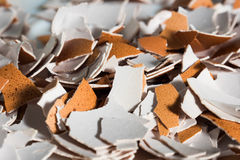 Crushed egg shell macro Royalty Free Stock Photo
