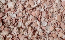 Crushed egg shells. Abstract texture background Royalty Free Stock Images