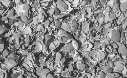 Crushed egg shells Stock Images