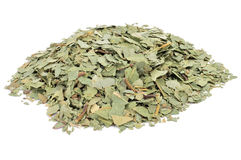 Crushed eucalyptus leaves. To prepare herbal tea on a white background Royalty Free Stock Photography