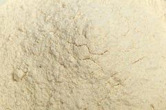 Crushed garlic powder Stock Photos