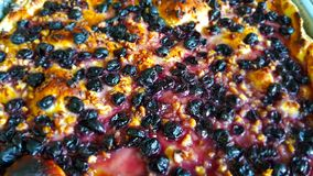 Crushed with grapes Schiacciata con l`uva royalty free stock photography