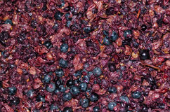 Crushed grapes for wine background Stock Photos