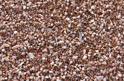 Crushed Gravel rock background Stock Photography
