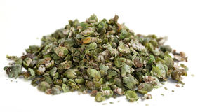 Crushed green Peppercorns (isolated on white) Stock Images