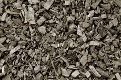 The crushed oak bark Royalty Free Stock Photos