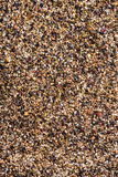 Crushed Peppercorns For Use As Background Image Stock Photography