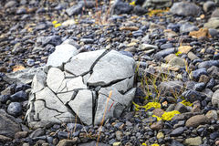 Crushed rock Stock Photography