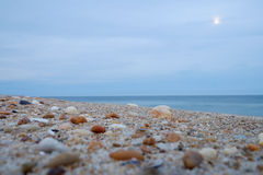 Crushed shells and stones during a moonrise on a beach at dusk Stock Image