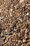 Crushed tree bark Stock Photography