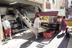 Crushing the Grapes off the street Collioure. The coop wine production in the small town of Collioure France, off loading the grapes for their first crushing Stock Images