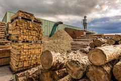 Crushing machine of wood and logs to process waste and transform into pellets stock image