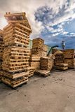Crushing machine of wood and logs to process waste and transform into pellets royalty free stock image