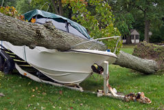 power boat crushed by fallen tree royalty free stock photo