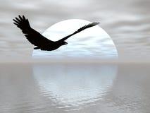 Crusing Mond-Adler lizenzfreie abbildung