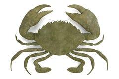 Crustáceo - serrata del scylla stock de ilustración