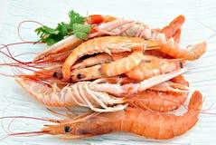 Crustáceos Imagen de archivo
