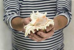 Crustáceos Imagen de archivo libre de regalías
