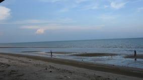 Crustáceos de excavación del hallazgo de los hombres de la gente del rastrillo tailandés del uso en la playa en Surat Thani, Tail almacen de metraje de vídeo
