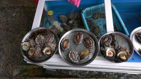 Crustáceos vivos frescos en el cuenco cubierto con agua en el mercado para la venta almacen de metraje de vídeo