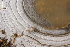 Crust of ice. Stock Images
